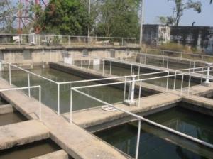 sedimentadores2